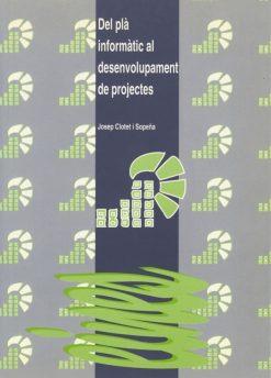 Del pla informàtic al desenvolupament de projectes.