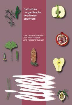 Estructura i organització de plantes superiors.